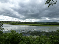Storm Clouds over Horseshoe Pond (dlv1) Tags: storm reflection water clouds lumix pond gray newhampshire panasonic pointandshoot concord horseshoepond dmczs8