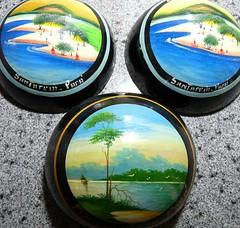 Cuias pintadas (Santarem-Pará) (land.nick) Tags: art crafts artesanato popularpaintings