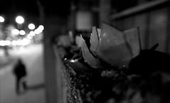 . (.:andrus:. [picHa]) Tags: street muro glass noir milano notte poli vetro politecnico piola polinoir