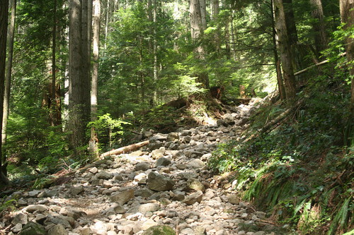 Lynn Peak trail