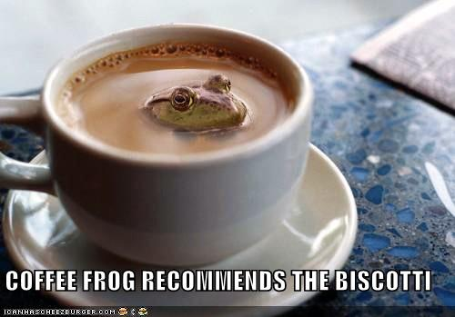 coffee frog biscotti
