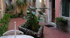 Murano glass in Venice garden! (~ l i t t l e F I R E ~) Tags: street blue venice light italy orange green glass rain yellow wall booth easter fire canal workers photographer candid telephone chinese line laundry glove vase hanging gondola restuarant alta ladder refuse laundromat 2008 murano washing bins quirky gondolier fitting aqcua cothes