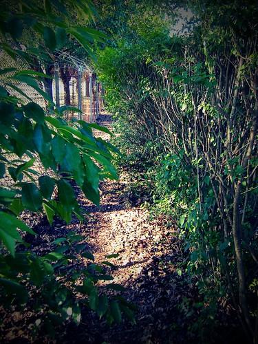 secret passage,