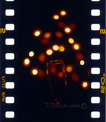 Champagne flute, lights, velvia (.James.) Tags: flowers sexy glass self 35mm lights james wine bokeh champagne slide flute velvia 50 isle developed e6 wight blackwood 14