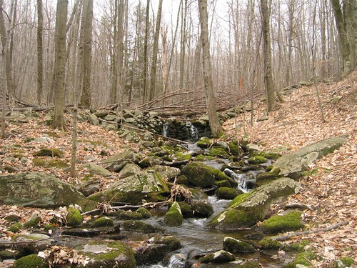 Gentle river stream