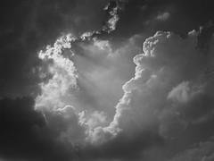 Crepuscular Rays (Dave Pearson) Tags: england bw cloud weather lincolnshire crepuscularrays atmosphericoptics heckington blackwhitephotos heckingtonshow