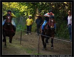 Concepto B ; Carreras a la Chilena (cespedesenelmaule) Tags: chile caballo fuji fiestas septiembre patrias carreras carrera tradicin talca maule ramal toconey sp5700