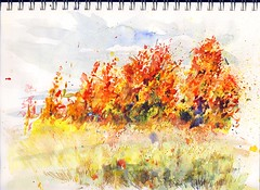 Field on Fire (Artist Naturalist-Mike Sherman) Tags: fall colors watercolor painting landscape midmichigan isabellacounty autumnfields