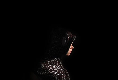 Day 328: Silver Spider