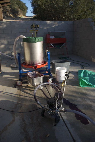 Now the skins and seeds are trapped inside the bladder press and only the juice is running out into that wheeled tray. Notice the smaller hose leading from that small tray to the foreground.