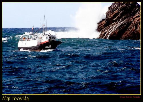 mar movida
