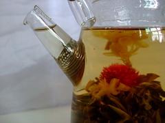 kuanyin flower details in pot (Chinese Tea lover) Tags: china flower glass brewing tea jasmine part teapot marigold sprout amaranth chinesetea arttea glassteapot bloomingtea crafttea