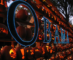 Obama - Pumpkin wall in Charlotte, NC (Doxieone) Tags: blue orange halloween wall pumpkin lights carved elizabeth charlotte president politics pumpkins northcarolina presidential carolina campaign obama democratic mostpopular ggg flickrchallengewinner damniwishidtakenthat pumpkinwallset2008 halloweenfall2008set