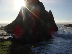MartinsBeach_2007-016 (Martins Beach, California, United States) Photo