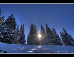 wintertime (mcPhotoArts) Tags: schnee trees winter sky sun snow germany bayern deutschland bavaria himmel bluesky sonne bume hdr garmischpartenkirchen hdri blueribbonwinner photomatix canoneos400d sigma1770mm2845dcmacro damniwishidtakenthat bumblebeephotografix ffgapashow