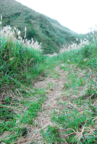 草山戰備道