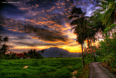 Sunset HDR (ezreen.photography) Tags: road county blue sunset sky orange green beautiful clouds photoshop asia exposure flickr village paddy coconut shots country hill explore malaysia passage soe hdr perlis photomatix abigfave platinumphoto aplusphoto flickrenvy yourbestshot magicdonkeysbest naturescreations cffaa