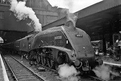 60017 Silver Fox at Kings Cross (prof@worthvalley) Tags: railroad silver all cross transport railway steam kings fox locomotive a4 types gresley 60017