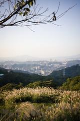 rest/city (休/城)