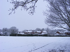 Blanket of snow #2