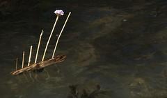 Moulin Huet pooh stick