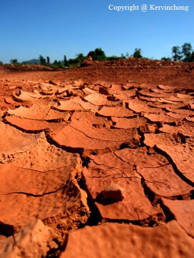 Barren-Grounds