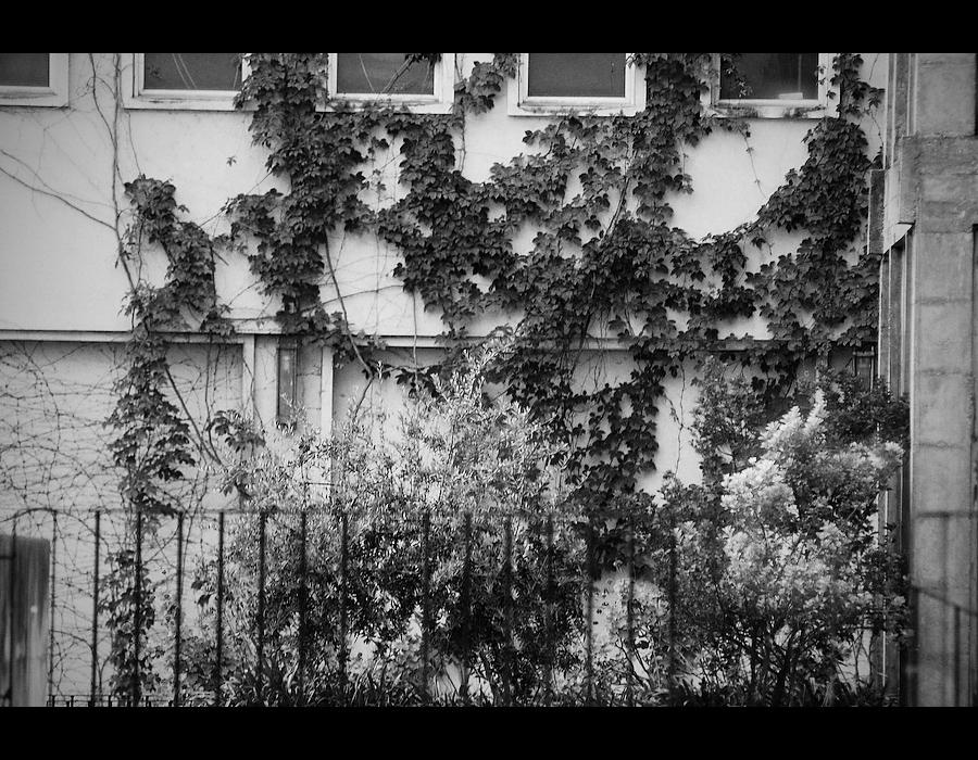 Foto de eras na fachada da universidade de coimbra...
