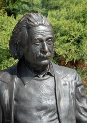 Un genio / A genius (charales1) Tags: espaa spain nikon flickr einstein carlos valladolid charlie nio charly castilla genio genious castile charales charales1