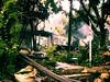 Jungle town (AniSuperNova83) Tags: city trees plants naturaleza nature architecture town arquitectura ruins plantas colombia arboles selva ciudad jungle ruinas medellin demolicion supernova83