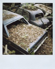 2 (Polaroid) (So gesehen.) Tags: wood old nature car polaroid schweiz switzerland automobile decay lofi scanned polaroidlandcamera autofriedhof autograveyard cardump polaroid600film kantonbern polaroid2000 kaufdorf sx70moddedfor600 historischerautofriedhof fehicle panpola