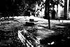 Epigraph (Hamed Parham) Tags: cemetery graveyard night gravestone inscription epigraph شب قبرستان سنگقبر کتیبه مهدیاخوانثالث hamedparham