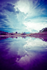 The World is Altered (Luis Montemayor) Tags: sky reflection water clouds mexico agua tequila cielo nubes reflejo stormclouds