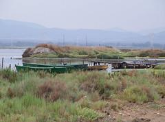 Pensiero (Lindo) (RoLiXiA) Tags: sardegna fauna flora sardinia natura barche acqua pesca blueribbonwinner ecosistema zoneumide paludi platinumphoto anawesomeshot kodakz812iszoom stagnodisantagilla