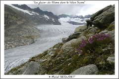 Rhne Gletscher / Glacier du Rhne (Valais - CH) (Michel Seguret) Tags: fab mountain nature berg fun schweiz nikon europa europe suisse postcard royal rhne glacier sensational fabulous michel iq svizzera gletscher atm shiningstar naturesbest valais smrgsbord potofgold cartepostale otw seguret nikond200 thinkgreen 5photosaday flickrsbest kartpostal fineartphotos golddragon royalgroup diamondheart anawesomeshot diamondclassphotographer flickrdiamond diamondstars exemplaryshotsflickrsbest thisphotorocks mostbeautifulpicture internationalgeographic jesuisvenuevousdire dragongoldaward flickrestrellas worldtrekker thebestoftheday checkoutmynewpics spiritofphotography gnnenlyisi colourvisions rubyphotographer sognidreams fenomeninaturali naturespotofgold awesomeblossoms nikonflickraward flickrverte naturallymagnificent vosplusbellesphotos oletusfotos flickrpopularphotographer croquenature panoramafotogrfico panoramafotografico doubledragonawards glestsch flickrsbestseriousphotographers mbpictures mostbeautifulpictures michelseguret