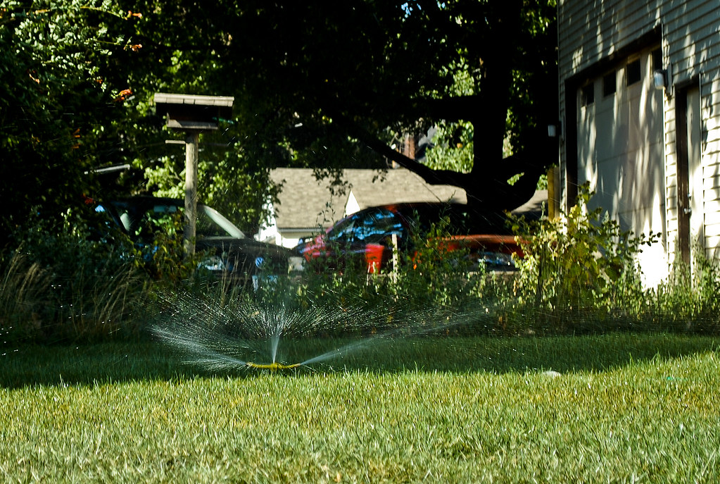 Lonely sprinkler