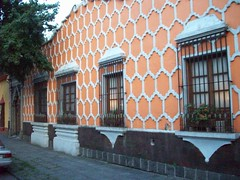 102_0211 (cas is king) Tags: df coyoacan cas