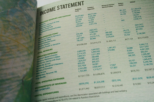 Income statement de lochnessjess