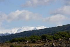 旭岳はすでに冬山