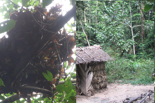 ape houses abandoned in TL2