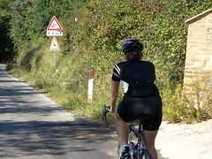 Bici Hugger alla Toscana: Hincapie Signature