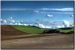 Le labour (│JL│) Tags: d70 ciel labour nuage champ llovemypic qualitypixels