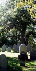A Salem Graveyard