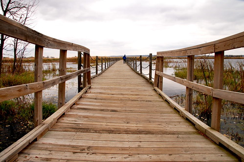 Horicon Boardwalk