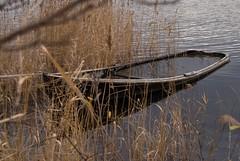 Sunken Boat, Vaxholm