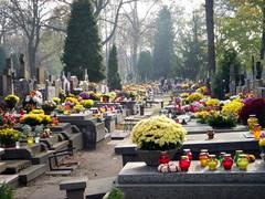 zaduszki 2008 (4) (kexi) Tags: november flowers autumn red holiday fall cemetery yellow nikon candles catholic many poland graves coolpix warsaw 2008 plenty zaduszki brodno dzienzaduszny cgth