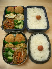Bentos for Him, Her (skamegu) Tags: rice cucumber burdockroot bento japanesefood tamagoyaki