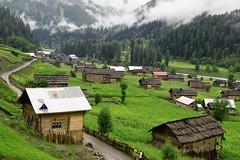 Neelum Valley, AJK (Max Loxton) Tags: pakistan green beauty rain misty architecture clouds pattern huts kashmir ppg neelumvalley yasirnisar towardspakistan maxloxton taobat