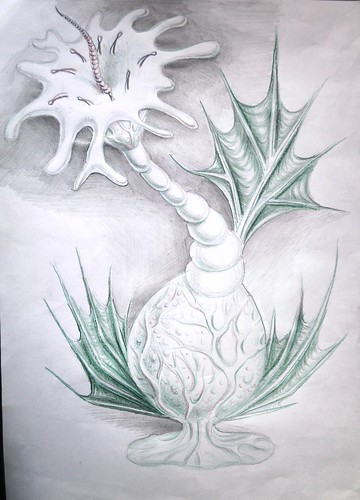 Planta-Animal