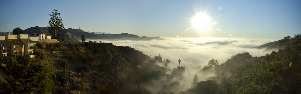 Hollywood Hills Morning Fog