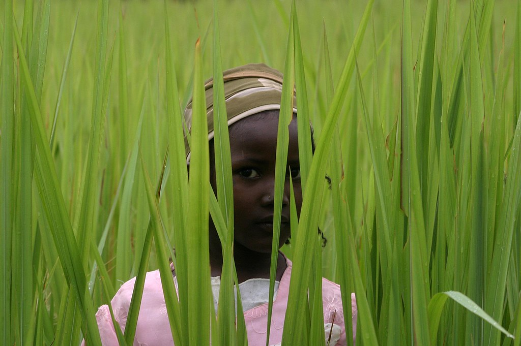long grass, african child